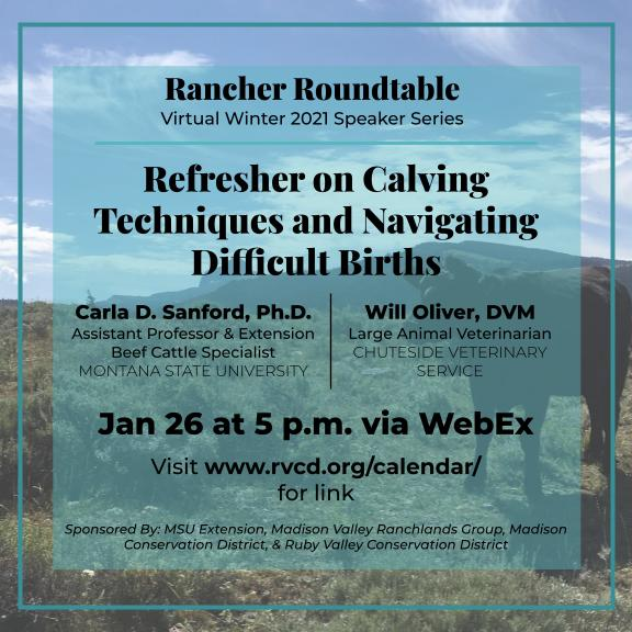 Rancher Roundtable Calving